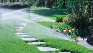 Irrigation & Sprinkler Repair