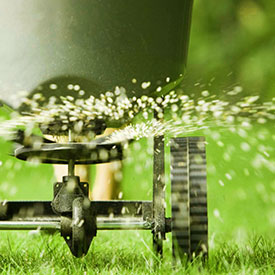 Topeka, KS Lawn Care Lawn Fertilization